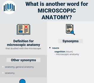microscopic anatomy, synonym microscopic anatomy, another word for microscopic anatomy, words like microscopic anatomy, thesaurus microscopic anatomy