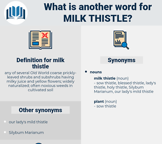milk thistle, synonym milk thistle, another word for milk thistle, words like milk thistle, thesaurus milk thistle
