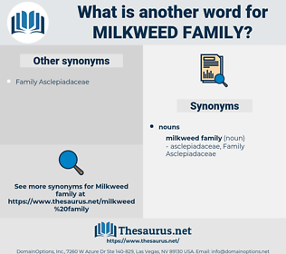 milkweed family, synonym milkweed family, another word for milkweed family, words like milkweed family, thesaurus milkweed family