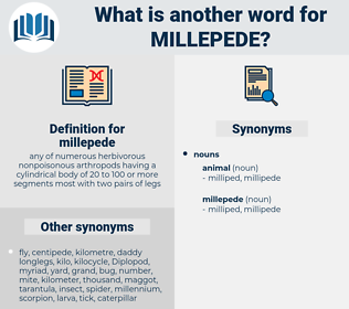 millepede, synonym millepede, another word for millepede, words like millepede, thesaurus millepede