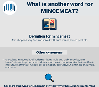 mincemeat, synonym mincemeat, another word for mincemeat, words like mincemeat, thesaurus mincemeat