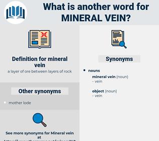 mineral vein, synonym mineral vein, another word for mineral vein, words like mineral vein, thesaurus mineral vein