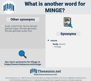 minge, synonym minge, another word for minge, words like minge, thesaurus minge