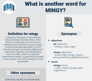 mingy, synonym mingy, another word for mingy, words like mingy, thesaurus mingy