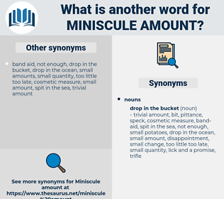 miniscule amount, synonym miniscule amount, another word for miniscule amount, words like miniscule amount, thesaurus miniscule amount