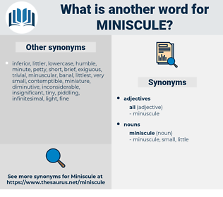 miniscule, synonym miniscule, another word for miniscule, words like miniscule, thesaurus miniscule