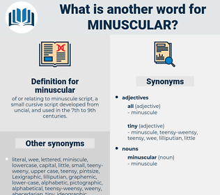 minuscular, synonym minuscular, another word for minuscular, words like minuscular, thesaurus minuscular