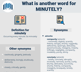 minutely, synonym minutely, another word for minutely, words like minutely, thesaurus minutely