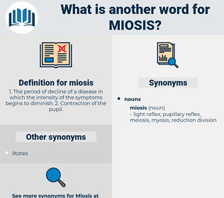 miosis, synonym miosis, another word for miosis, words like miosis, thesaurus miosis