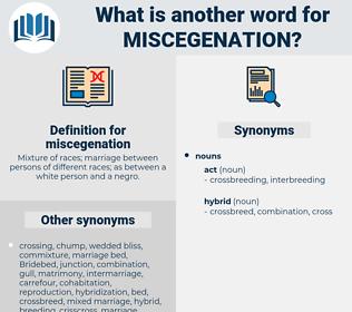 miscegenation, synonym miscegenation, another word for miscegenation, words like miscegenation, thesaurus miscegenation