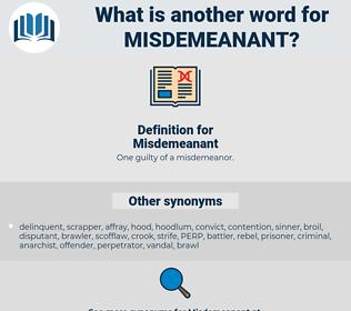Misdemeanant, synonym Misdemeanant, another word for Misdemeanant, words like Misdemeanant, thesaurus Misdemeanant