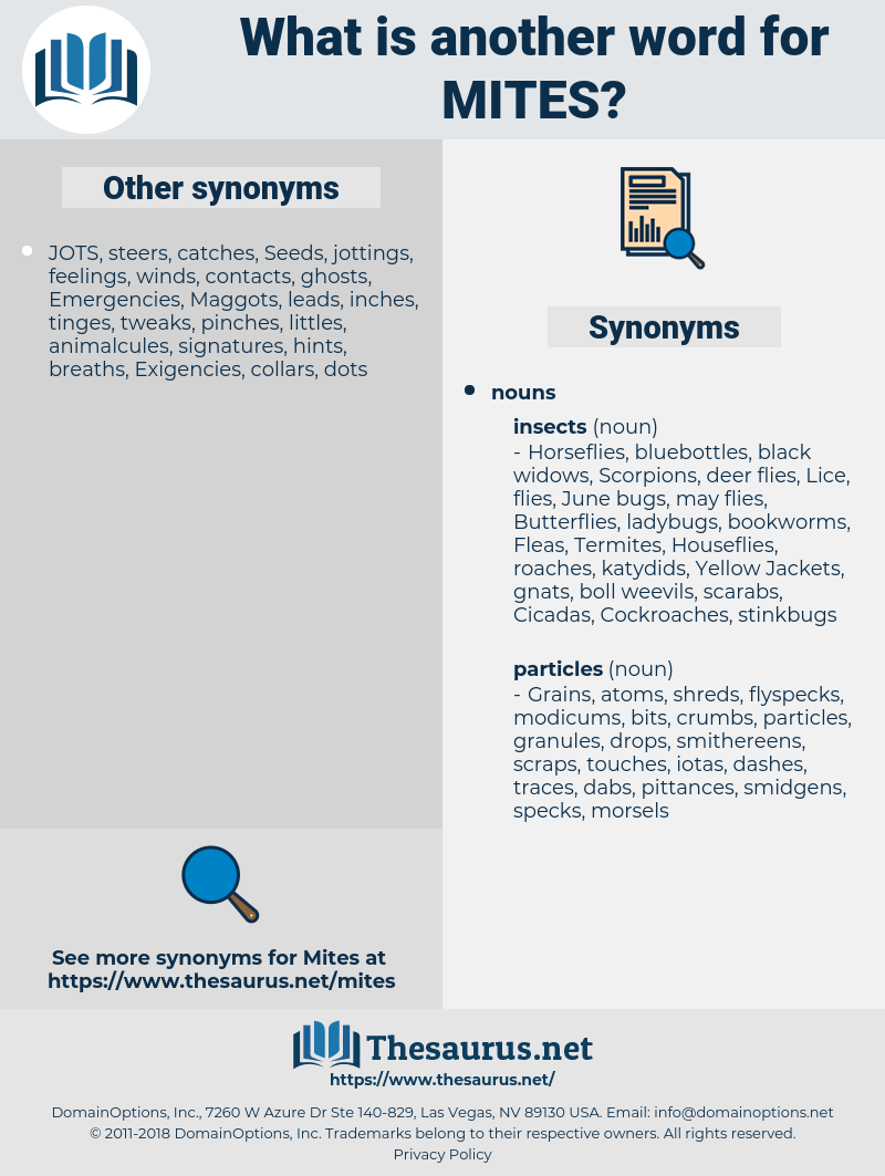 Mites, synonym Mites, another word for Mites, words like Mites, thesaurus Mites