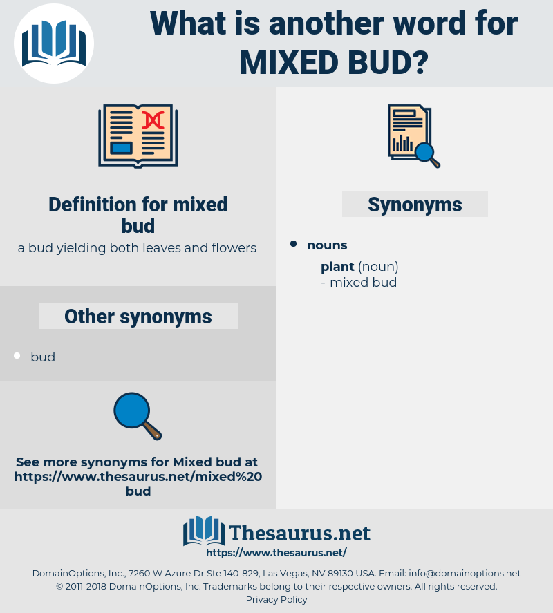mixed bud, synonym mixed bud, another word for mixed bud, words like mixed bud, thesaurus mixed bud