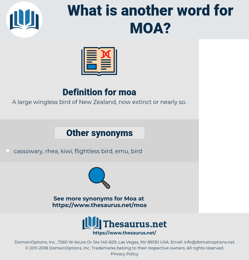 moa, synonym moa, another word for moa, words like moa, thesaurus moa