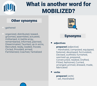Mobilized, synonym Mobilized, another word for Mobilized, words like Mobilized, thesaurus Mobilized