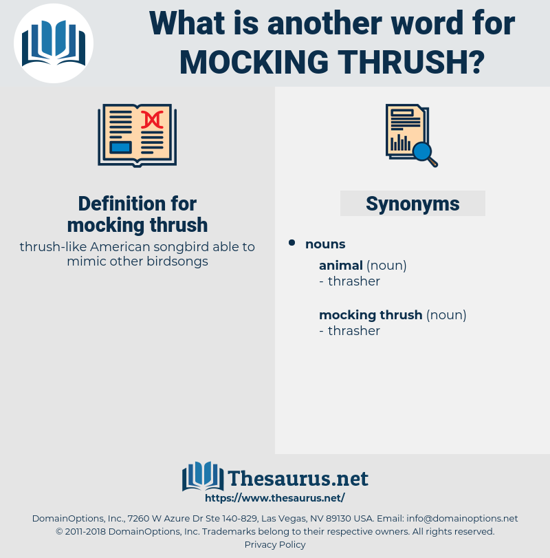 mocking thrush, synonym mocking thrush, another word for mocking thrush, words like mocking thrush, thesaurus mocking thrush