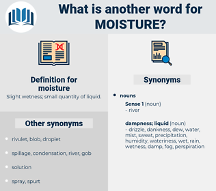 moisture, synonym moisture, another word for moisture, words like moisture, thesaurus moisture