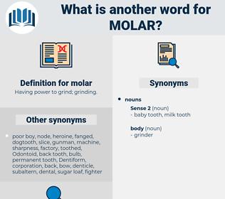 molar, synonym molar, another word for molar, words like molar, thesaurus molar