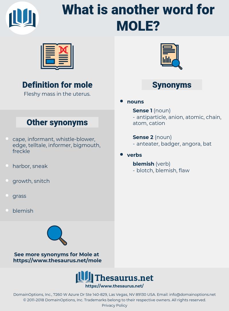 mole, synonym mole, another word for mole, words like mole, thesaurus mole