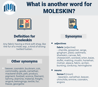 moleskin, synonym moleskin, another word for moleskin, words like moleskin, thesaurus moleskin