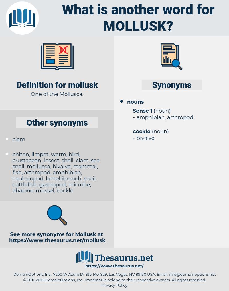 mollusk, synonym mollusk, another word for mollusk, words like mollusk, thesaurus mollusk