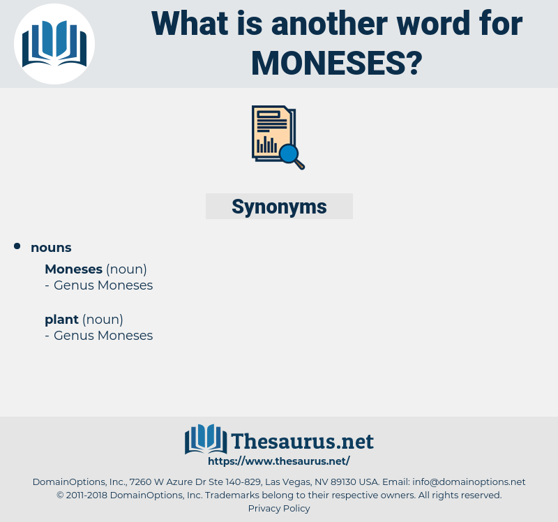 moneses, synonym moneses, another word for moneses, words like moneses, thesaurus moneses
