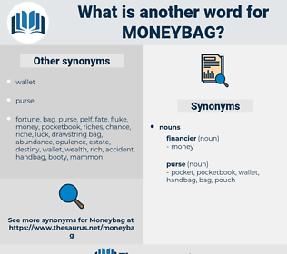 moneybag, synonym moneybag, another word for moneybag, words like moneybag, thesaurus moneybag
