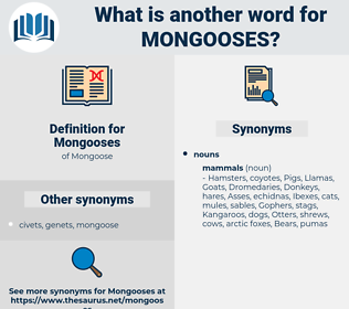 Mongooses, synonym Mongooses, another word for Mongooses, words like Mongooses, thesaurus Mongooses