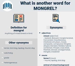 mongrel, synonym mongrel, another word for mongrel, words like mongrel, thesaurus mongrel