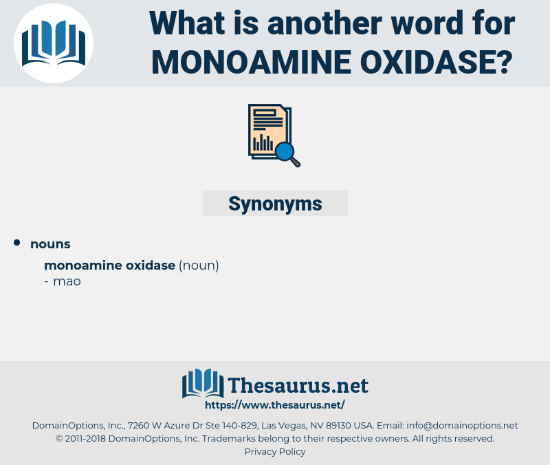 monoamine oxidase, synonym monoamine oxidase, another word for monoamine oxidase, words like monoamine oxidase, thesaurus monoamine oxidase