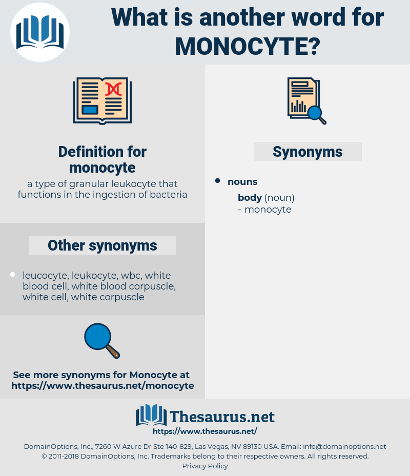 monocyte, synonym monocyte, another word for monocyte, words like monocyte, thesaurus monocyte