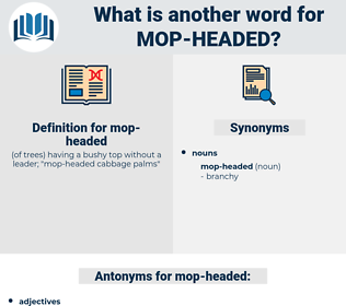 mop-headed, synonym mop-headed, another word for mop-headed, words like mop-headed, thesaurus mop-headed