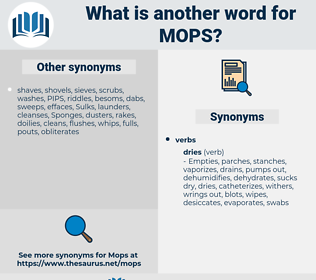 mops, synonym mops, another word for mops, words like mops, thesaurus mops
