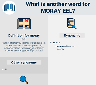 moray eel, synonym moray eel, another word for moray eel, words like moray eel, thesaurus moray eel