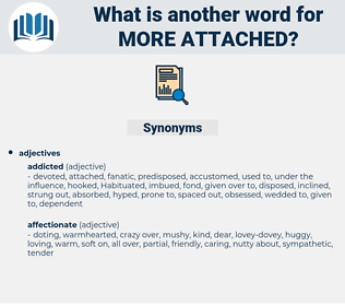 more attached, synonym more attached, another word for more attached, words like more attached, thesaurus more attached