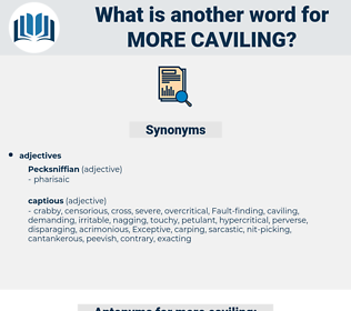 more caviling, synonym more caviling, another word for more caviling, words like more caviling, thesaurus more caviling