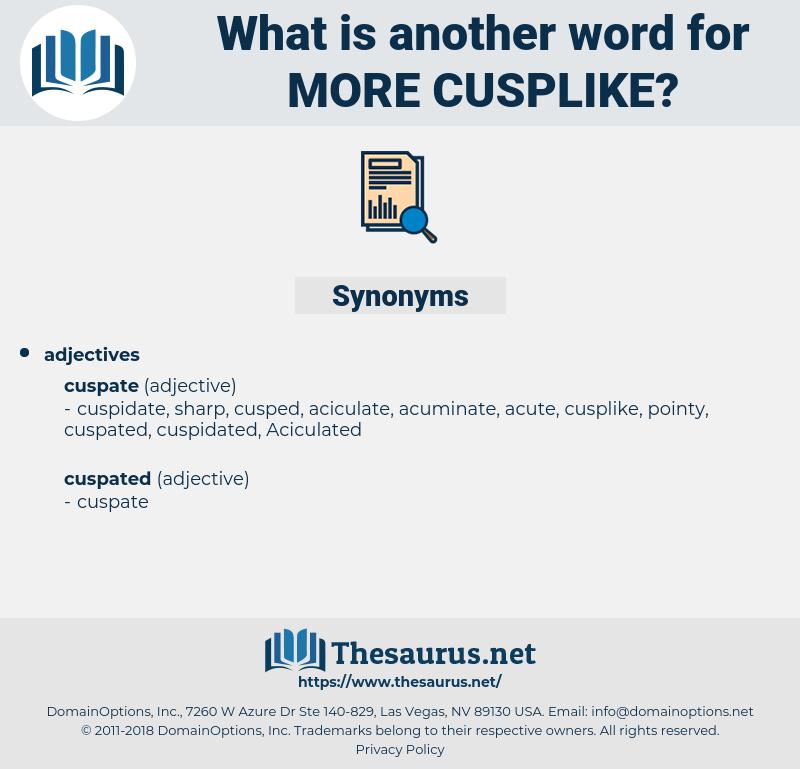 more cusplike, synonym more cusplike, another word for more cusplike, words like more cusplike, thesaurus more cusplike
