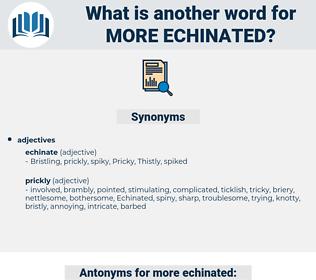 more echinated, synonym more echinated, another word for more echinated, words like more echinated, thesaurus more echinated