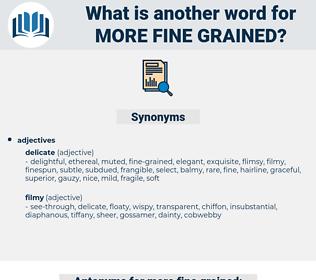 more fine-grained, synonym more fine-grained, another word for more fine-grained, words like more fine-grained, thesaurus more fine-grained