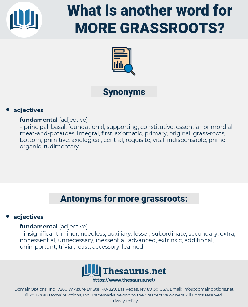 more grassroots, synonym more grassroots, another word for more grassroots, words like more grassroots, thesaurus more grassroots