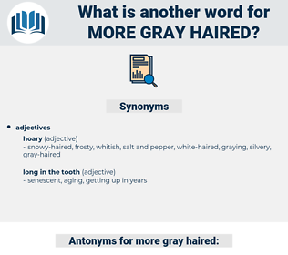 more gray haired, synonym more gray haired, another word for more gray haired, words like more gray haired, thesaurus more gray haired