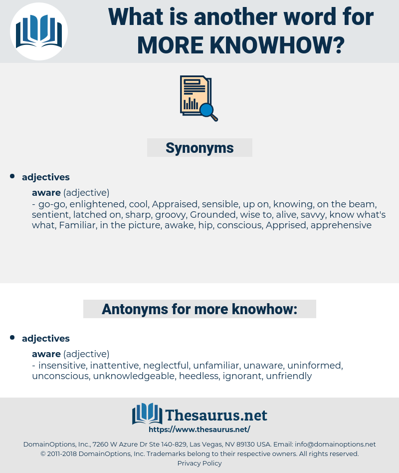 more knowhow, synonym more knowhow, another word for more knowhow, words like more knowhow, thesaurus more knowhow