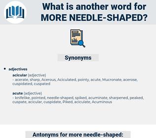 more needle shaped, synonym more needle shaped, another word for more needle shaped, words like more needle shaped, thesaurus more needle shaped