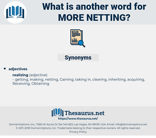 more netting, synonym more netting, another word for more netting, words like more netting, thesaurus more netting