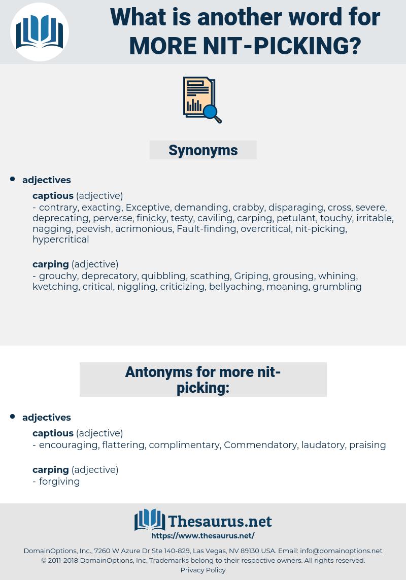 more nit-picking, synonym more nit-picking, another word for more nit-picking, words like more nit-picking, thesaurus more nit-picking
