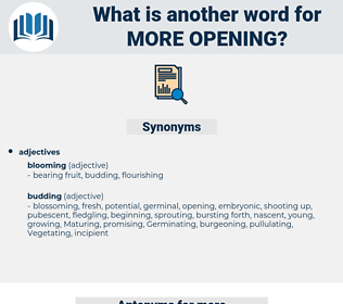 more opening, synonym more opening, another word for more opening, words like more opening, thesaurus more opening