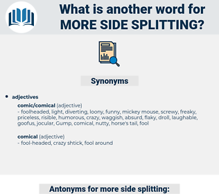 more side splitting, synonym more side splitting, another word for more side splitting, words like more side splitting, thesaurus more side splitting