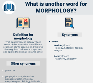 morphology, synonym morphology, another word for morphology, words like morphology, thesaurus morphology