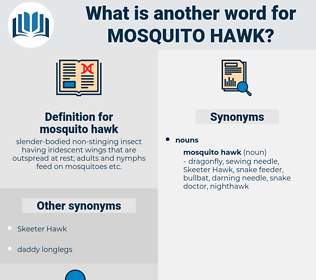 mosquito hawk, synonym mosquito hawk, another word for mosquito hawk, words like mosquito hawk, thesaurus mosquito hawk