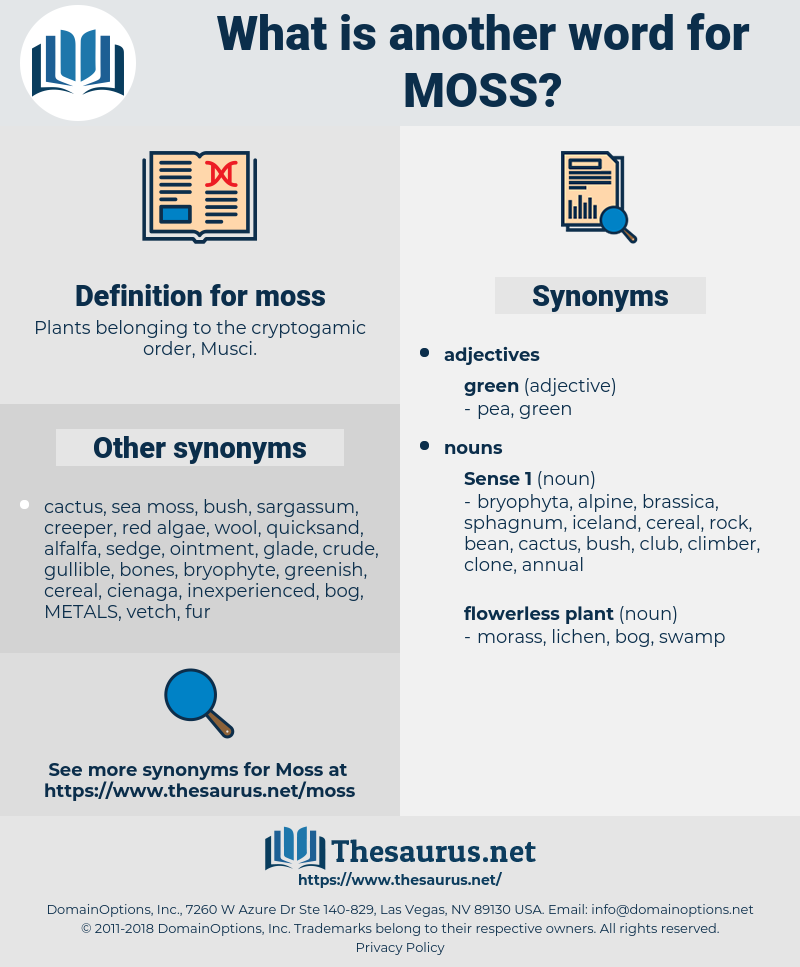 moss, synonym moss, another word for moss, words like moss, thesaurus moss